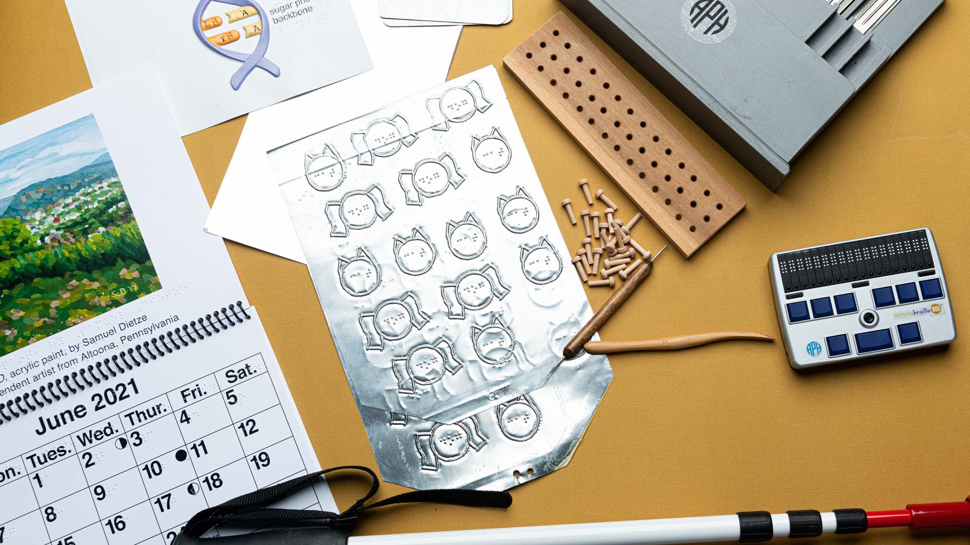 A metal embossing plate featuring cats and dogs, a print/braille calendar, a pegboard, a long cane, a refreshable braille display